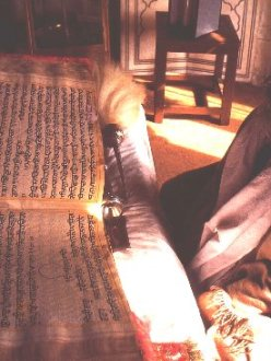 A man reads from the Guru Granth Sahib (source: sikh-history.com)