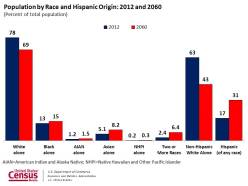 US Population by Race and Hispanic Origin (source: US Census)